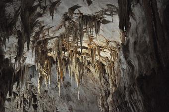 Nettuno barlang